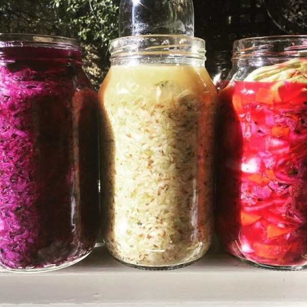Fermentation and pickling